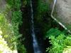 Collis Steilpfad - verborgen waterval (juni 2015)