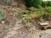 Kletterweg 2011 na 30 min: het echte werk, met een touw naar boven