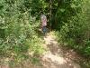 Kletterweg 2011 na 1 u 20 min: nog een stuk bospad
