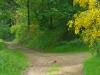 wandeling Bernkastel - eekhoorn (mei 2015)
