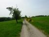 wandeling Bernkastel - heuvelrug met gras (mei 2015)