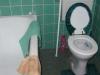 Badkamer - toilet (2010)
