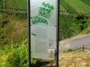 Sortengarten Zeltingen - infobord (aug 2012)