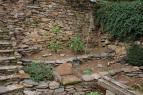 opgeruimde tuin (okt 2020)