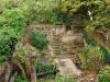 geknotte vlier en opgeruimdere tuin (okt 2019)