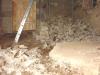 vloer weg puinhoop groeit (juli 2013)