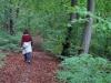 Wandeling Rheinstein 1 - makkelijk pad (okt 2017)