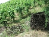 Vakantie - wijnbouwwerktuig (juli 2006)
