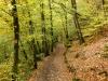 Eltz Karden na 17 min - dieper het bos in (okt 2012)