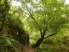 Karden Eltz na 20 min - bord (okt 2012)