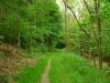 wandeling - duidelijker pad (juni 2014)