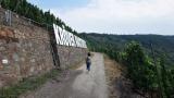 """wandeling Traben - langs de """"wijnletters"""" (juli 2018)"""