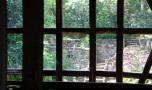 uitzicht op de tuin (juli 2021)