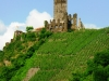 Burg Metternich – laatste foto (juli 2013)