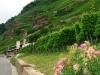 "Kletterweg 2011: de ""Kletterweg 2011 na 1 u 54 min: het eind-/beginpunt in zicht"