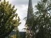 St. Remigius kerk door bladeren (juli 2007)