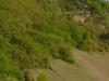 Pad Wolfer Berg-Kloster – het nieuwe uitkijkpunt (april 2012)