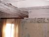 Balken, roset en muurversiering (2009)