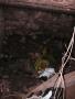 alleen maar troep in de kelder (2007)