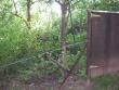 boventuin gezien vanaf de rechter buren (2008)