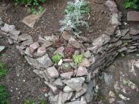 Detail tuin (juli 2009)