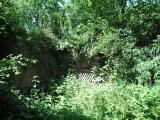 De verstopte muur (juli 2007)