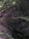 Wandeling - bruggetje (juli 2006)