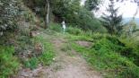 Nieuwe pad wandeling - doodlopende (aug 2020)