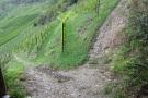 Nieuwe pad wandeling - naar boven of beneden (aug 2020)