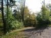 Alf Marienburg na 34 min - laatste bospad (okt 2012)