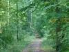 Karden Eltz na 1 u 19 min. - bospad (okt 2012)