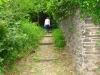 wandeling - kleiner pad (juni 2014)
