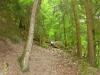 wandeling - klimmen (juni 2014)
