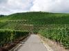 Weinlehrpfad - Aan de voet van de wijnbergen (aug 2011)