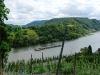 Weinlehrpfad - Uitzicht op de Mosel (aug 2011)