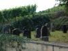 Weinlehrpfad - De oude Joodse begraafplaats (aug 2011)